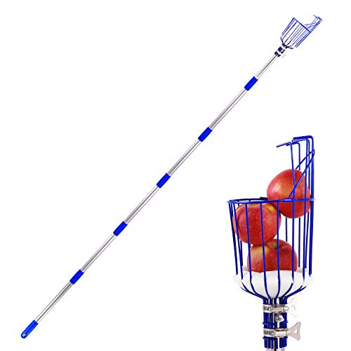 Ohuhu Fruit Picker, 8 FT Height Adjustable Fruit Picker Tool with Big Basket, Reusable Light-Weight Stainless Steel Pole to Pick Apple, Orange, Pear, Mango Picker for Garden Patio