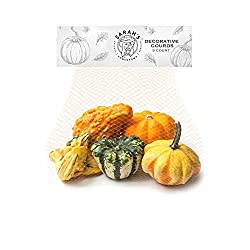 Sarah's Homegrown, Ornamental Gourds, 5 count