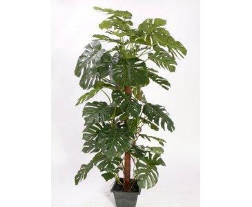 Monstera deliciosa Fensterblatt 60 Blätter, Höhe ca. 190cm - Monstera Kunstpflanze mit 60 herzförmigen Blättern - künstliche Zimmerpflanze