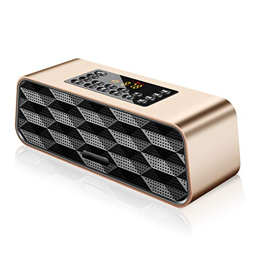 QLIGHA Tragbares FM-Radio für Senioren mit drahtlosem Bluetooth-Lautsprecher, Kopfhörerbuchse und USB-Disk/TF-Karte