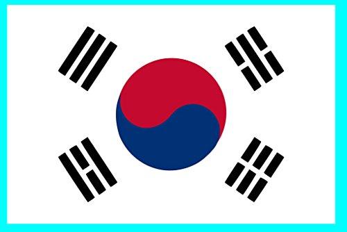 TENNER.LONDON Koreaanse vlag Iron on Screen print Stof/Weefsel Applique machine wasbare transfer