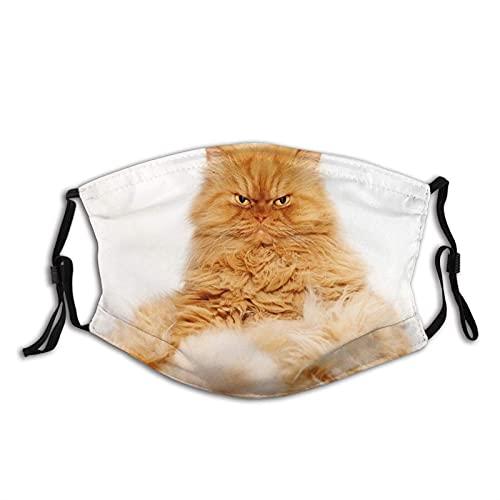 Mascarilla de gato persa en la depilación con bolsillo de filtro, lavable, reutilizable, con 2 filtros, tamaño M, protector facial