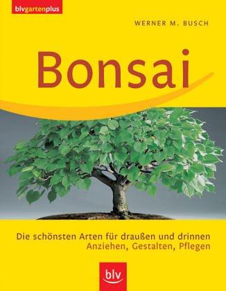 Bonsai: Die schönsten Arten für...