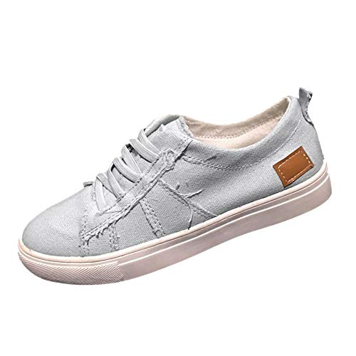 Women's Canvas Shoes Slip On Sneakers Low Top Sneaker Classic Casual Zipper Shoes Loafers (Gray -2, US:8.5)