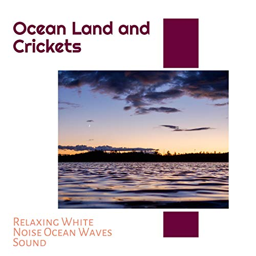 Ocean Land and Crickets - Relaxing White Noise Ocean Waves Sound
