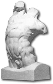 Plaster Cast Human Male Torso Model