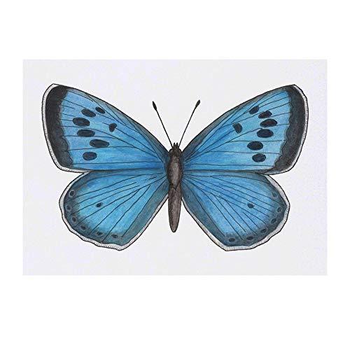 Azeeda Grand 'Papillon Bleu' Tatouages temporaires (TO00028732)