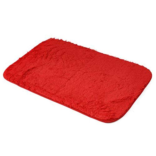 WZL schuim badmat tapijt badkamer douchekleed antislip luxe absorberend zacht geheugendeken Tapis salontapijt tapijt 4 kleuren, rood