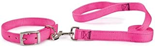 Guardian Gear Basic Nylon Double Layer Dog Leash, 6-Feet x 1-Inch Lead, Flamingo Pink