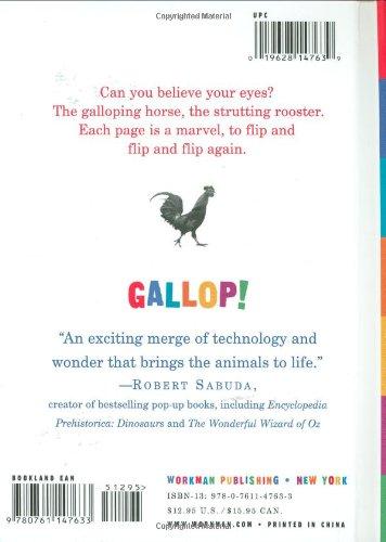 『Gallop! (Scanimation)』の4枚目の画像