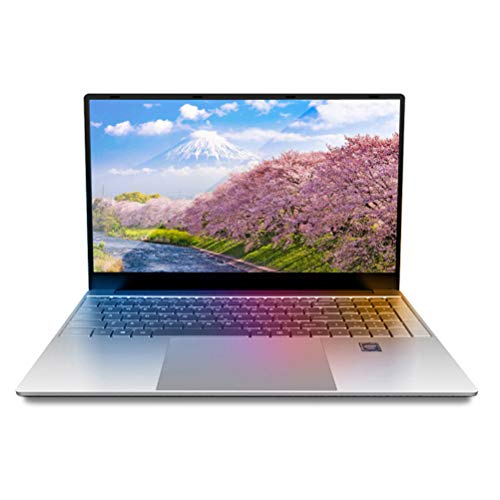 15,6 Zoll Laptop Notebook Computer PC, Windows 10 Pro Betriebssystem, Intel J3455 Quad Core CPU, 8 GB RAM, 128 GB SSD, Full HD 1920 x 1080, Unternehmen Schlankes Notebook, Silber, D8