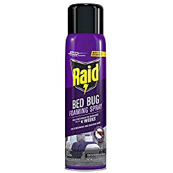 commercial Raid bed foam spray, indoors, non-contaminated, 16.5 oz, 1 pack bed bug spray