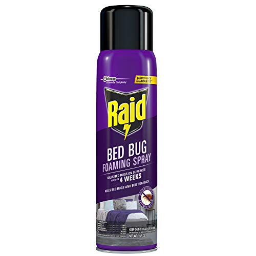 Raid Bed Bug Foaming Spray, For Indoor Use, Non-Staining, 16.5 Oz, Pack of 1