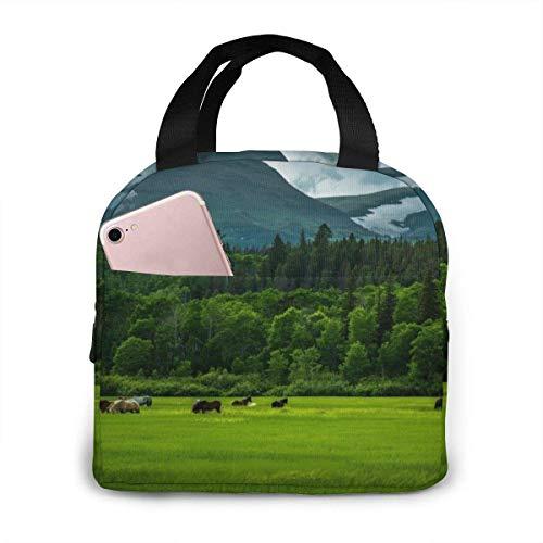 Tragbare isolierte Lunch-Tasche Berge Segelschiff Vögel Wasserdichte Lunch-Handtasche Lebensmittel Reißverschluss Aufbewahrungs-Lunchbox 4 Stunden warm halten mit Fronttasche.