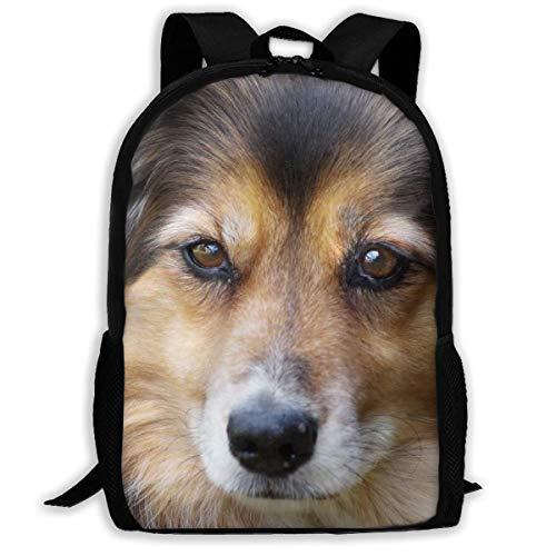 Kinderrugzakken, hond dier, huisdier, schattige boekentas, comfortabele schoolboekentas voor volwassenen, klimmen reizen, 43 x 28 x 16 cm