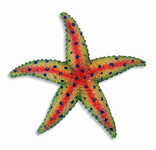 Handpainted Starfish Star Fish Replica Wall Mount Kid Room Decor Plaque 6' Red Yellow Green
