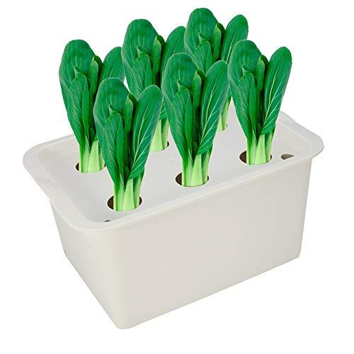 Zerodis Caja del gabinete del Sistema hidropónico de la Planta, 6 Hoyos Kit de la Cosecha del envase del Sitio de la Planta Jardinera del jardín de Bubble Macetas del Cuarto de niños(Gris)
