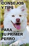CONSEJOS Y TIPS PARA TU PRIMER PERRO (Spanish Edition)