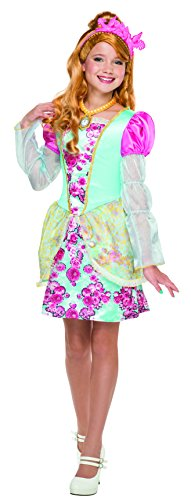 Ever After High Ashlynn Ella Costume, Child's Medium