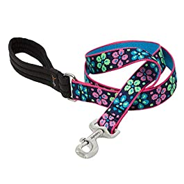 LupinePet Originals 1″ Flower Power 6-Foot Padded Handle Leash for Medium and Larger Dogs