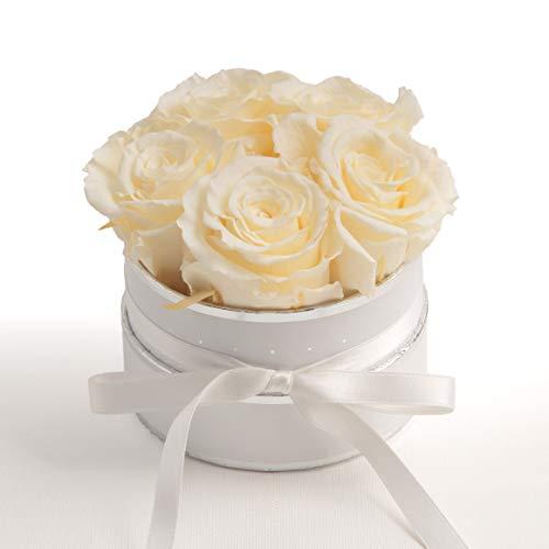 ROSEMARIE SCHULZ Heidelberg Flowerbox rund Infinity Rosen - Blumenbox in Weiß 4 konservierte Rosen (Weiß-Beige)