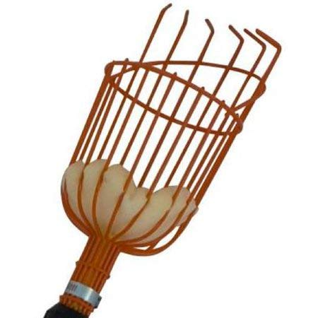 Omni USA Premium Fruit Picker Basket Head for Picking Apples Oranges Plums Nectarines Lemons Avocados and All Kinds of Fruits