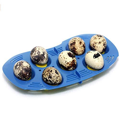 R-Com RCOM Mini 7 Quail Egg Tray for Mini incubators