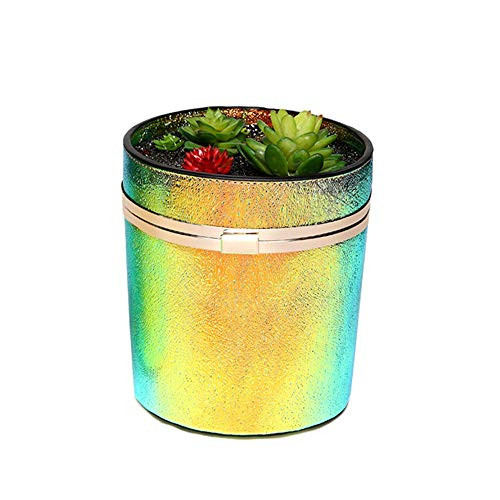 Warm huis kleurrijke stof simulatie vlezige bloempotten ronde vat long handtassen mode Trend Lock kleine schouder tas kan worden ontkleurd leuk
