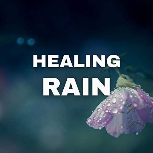 Rain for Deep Sleep, Rain Sounds & Nature Sounds Collection