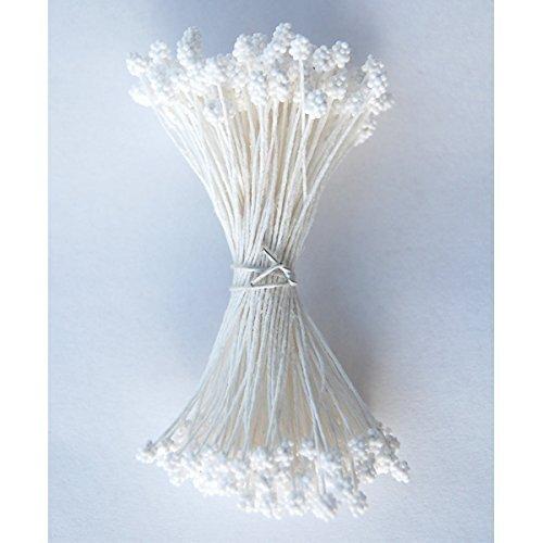Weiß Gypsophilia Staubblättern für Zuckerbäckerei Blumen