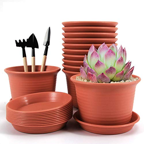 VLikeze Plastic Planter Flower Pots, 12 Packs Succulents Pots with Drain Saucers Nursery Seedling Container for Bonsai Plants, Aloe, Herb, Orchid and More- Pottery Red