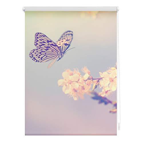 Lichtblick KRT.100.150.356 Rollo Klemmfix, ohne Bohren, Blickdicht, Schmetterling - Rosa 100 x 150 cm (B x L)