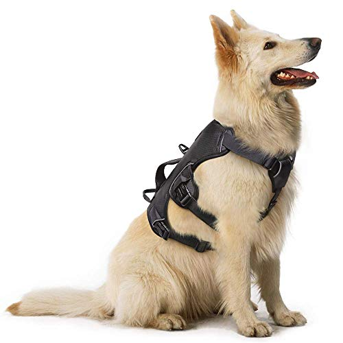 rabbitgoo Large Dog Harness with Handle for Lifting, No Pull and Adjustable Padded Heavy Duty Vest Harness for Dogs Easy Control, Outdoor Pet Vest with Reflective Stripe for Walking and Training