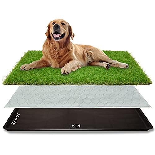 Dog Grass Large Potty Patch (35
