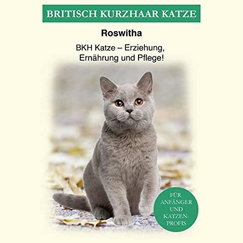 Britisch Kurzhaar Katze Titelbild