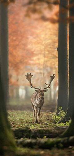 Hochwertiger Textilbanner Herbst/Herbstlich – Große Auswahl – 180cmx90cm – Einseitig Bedruckt - Schaufenster Deko - Wanddeko/Textilbild/Herbstdeko (Elch Lichtung)