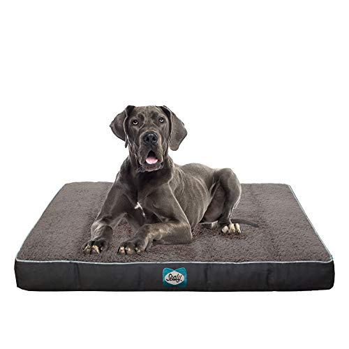 Sealy Cushy Comfy Pet Dog Bed | Memory and Orthopedic foam with Cooling Energy Gel Dog Pet Bed with machine washable Sherpa top and water resistant inner liner, XL Grey