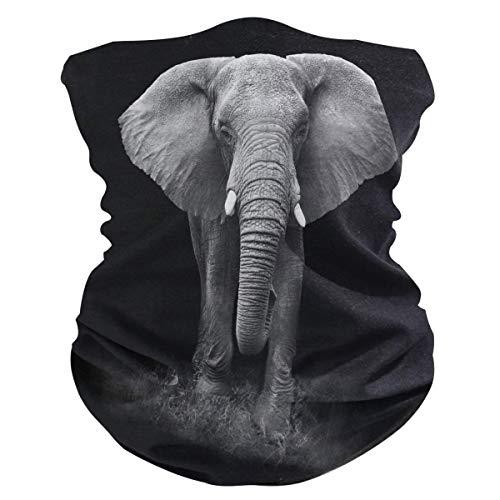 asdew987 Diadema negra con elefante africano con diseño de elefante, máscara de cuello, bufanda mágica para pasamontañas para mujeres, hombres, niños y niñas