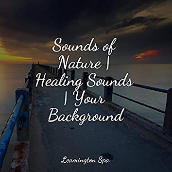 Sounds of Nature | Healing Sounds | Your Background