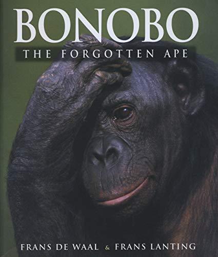 Bonobo: The Forgotton Ape: The Forgotten Ape