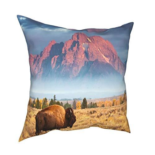Pillow Funda Fundas de Almohada 45x45CM Un Bisonte se Encuentra Frente a Mount Moran, al Norte de Jackson Hole Wyoming decoración para decoración del hogar Oficina Sofá Holiday Bar Café Boda Coche