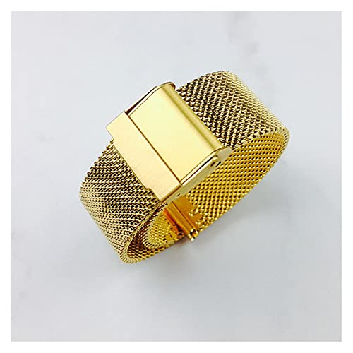 LINMAN Reloj de Reloj 12 mm 14 mm 18 mm 20 mm 22 mm 24 mm Universal Acero Inoxidable Metal Reloj de Metal Banda fósil Correa Pulsera Negro Rosa Oro Plata (Color : Gold, tamaño : 18mm)
