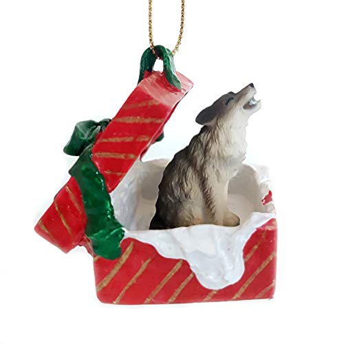 Conversation Concepts Timber Wolf Red Gift Box Ornament