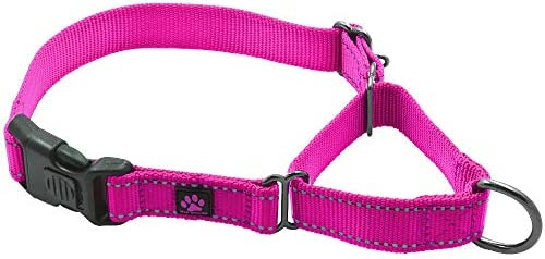 Max and Neo Nylon Martingale Collar We Donate a Collar to a Dog Rescue for Every Collar Sold product image