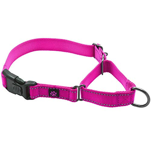 Max and Neo Nylon Martingale Collar - We Donate a Collar to a Dog Rescue for Every Collar Sold (Large, Pink)