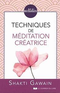 Book's Cover of Techniques de méditations créatrice