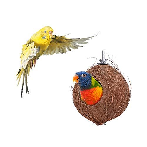 CWZJ Maison d'oiseau de Coquille de Noix de Coco Naturelle-Maison d'oiseau de Nidification pour la Cage ou l'extérieur-Perruche, Eco-Friendly nid d'engraissement