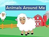 Animals Around Me