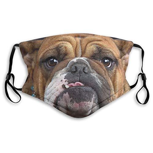 ETHAICO Fülltuch für Erwachsene, englische Bulldogge, Schmuck, Welpengesichts-Charm, wiederverwendbar, winddicht, halbe Gesicht, doppelter Schutz