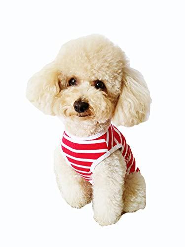 Gmjay Leuke Pet Hond Panty in Sanitaire Broek Fysiologische Broek Menstruatie Ondergoed Broek voor Pet Fysiologische Broeken